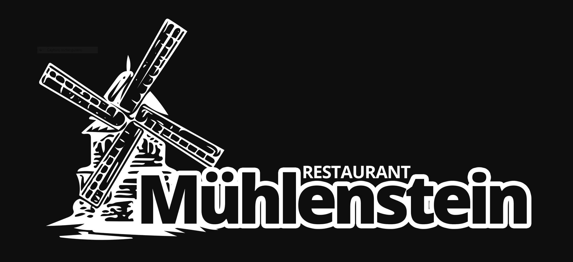 Mühlenstein